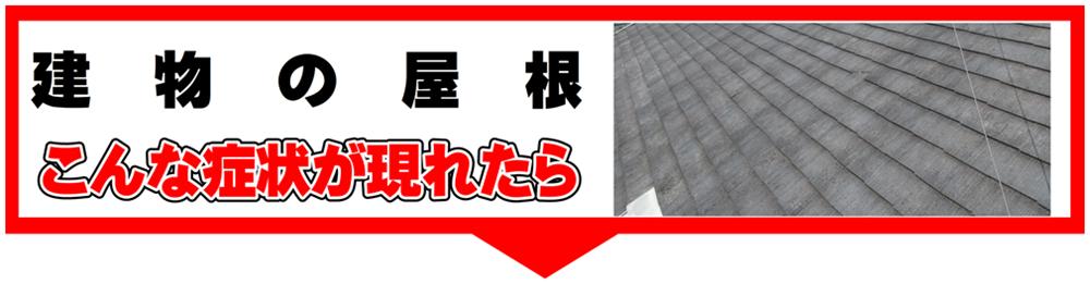 屋根 痛み